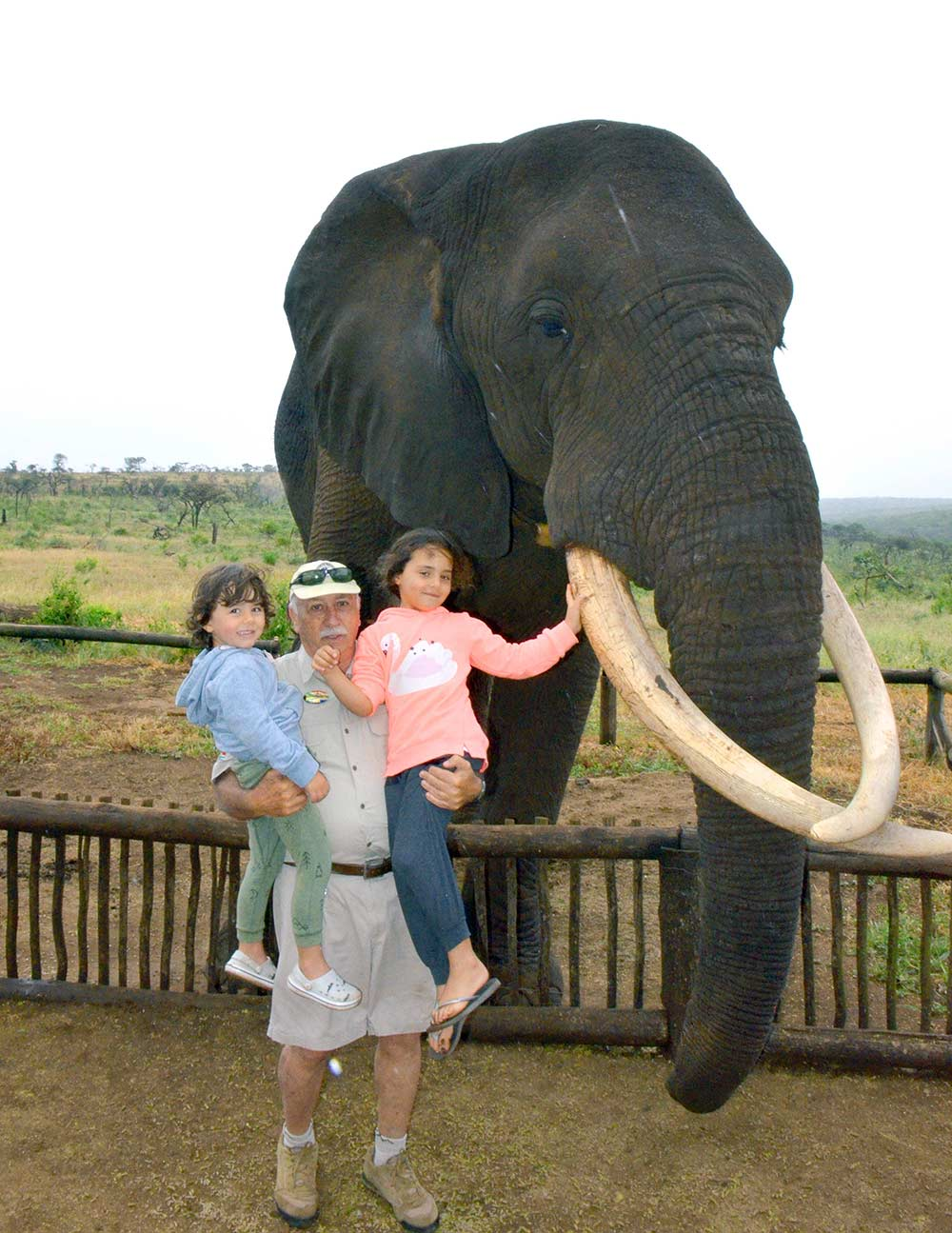 Zulu Safaris DURBAN South Africa - Bayete Elephant Interaction & iSimangaliso Wetlands Boat Safari